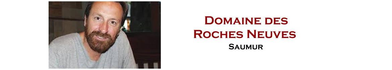 Domaine des Roches Neuves - Bio